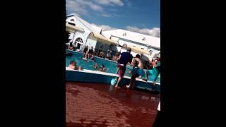 Конкурс мокрых маек(Crazy jump party, конкурс мокрых маек., 2014-07-06T09:10:41.000Z)