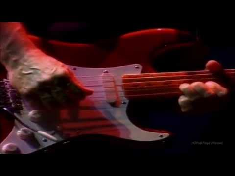 """Pink Floyd -  Live @ Earl's Court  """" Coming Back To Life """""""
