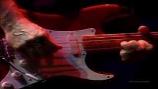 Pink Floyd -  Live @ Earl