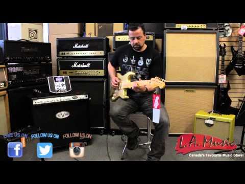 LA Music Canada - Sam Demo The Fender Custom Shop 1956 Relic Stratocaster 56 HLE Gold Special Run