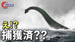 【衝撃】ネス湖の『ネッシー』が既に捕獲済のこれだけの理由! ネッシー 検索動画 6
