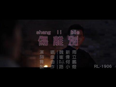 魏新雨 | 傷離別 | (DJ版) | (1080P)KTV