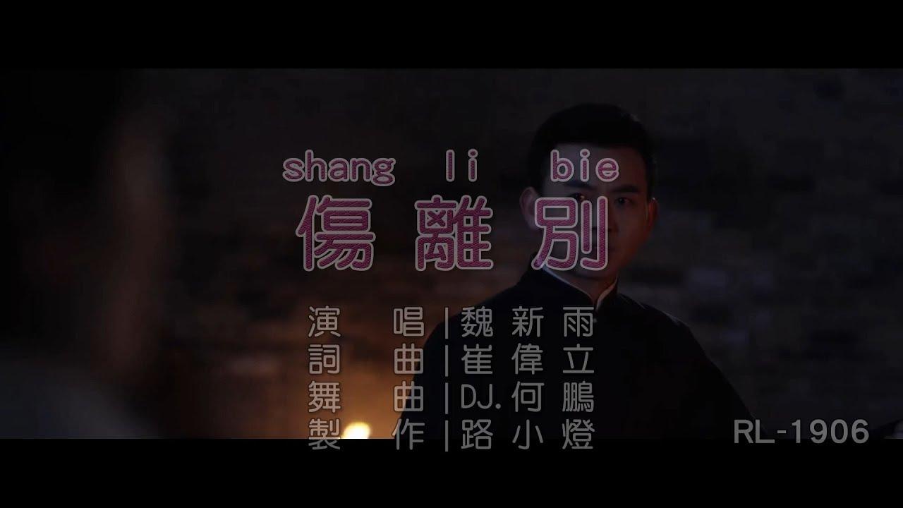 魏新雨   傷離別   (DJ版)   (1080P)KTV - YouTube