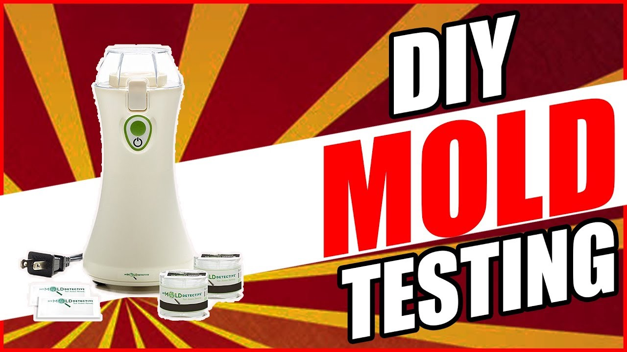 Mymolddetective Review Diy Mold Testing Test For 2018