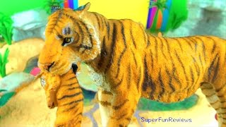 Cute Toy Animals - Lion Tiger Leopard Apes Monkeys Learn about Animals in English