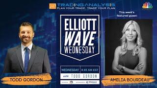 The Elliott Wave Wednesday Live Stream w/ Special Guest Amelia Bourdeau - 8/21/19