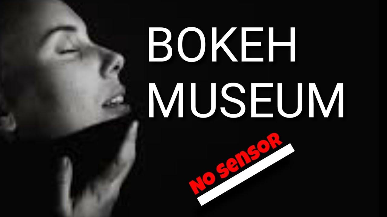 Video Bokeh Museum No Sensor Full Youtube