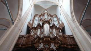 De Jong & De Jong - BWV 202/9, Johann Sebastian Bach
