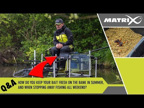 How to Catch Perch - Perch Tips using Live Minnows from YouTube · Duration:  7 minutes 59 seconds