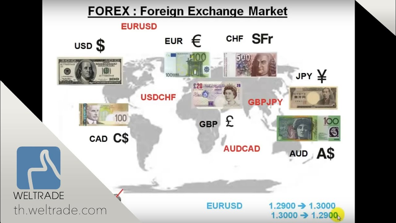 What is FOREX ( FOREX คืออะไร )