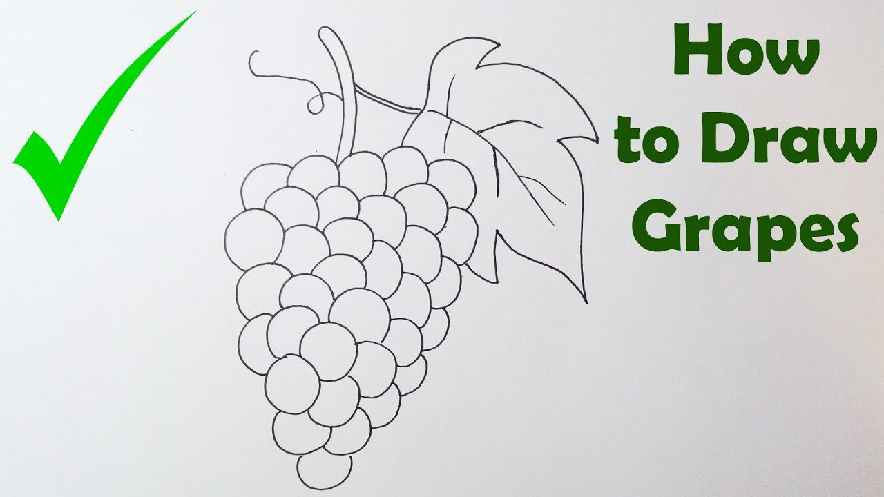 How To Draw Grapes Easy Way Youtube