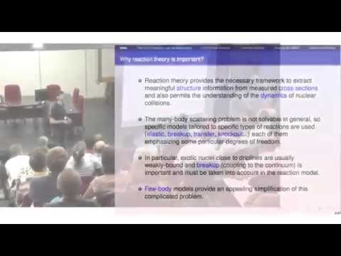 NN 2015 - Reaction theory: status and perspectives