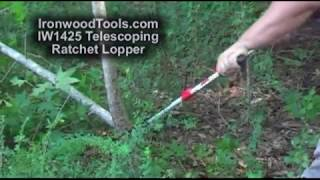 IW1425 Telescoping Ratchet Lopper