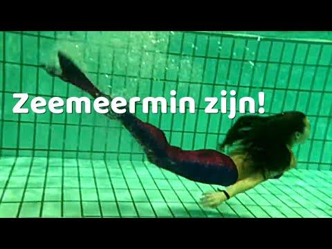 ZEEMEERMINSTAARTEN testen van www.noordzeemeermin.nl (ONDERWATER-beelden!)