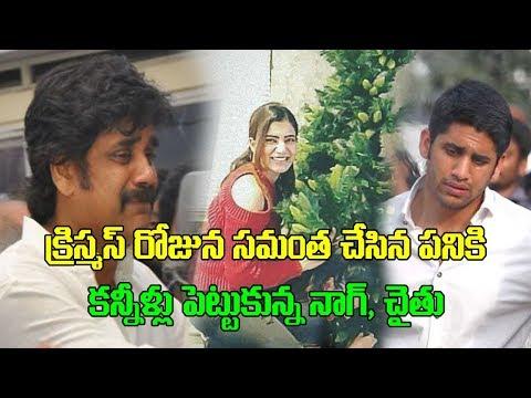 Samantha Christmas Celebrations | Naga Chaitanya | Samantha Akkineni | Nagarjuna | GoldScreen