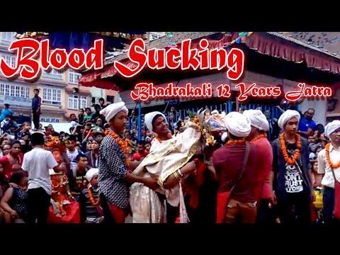 Blood Sucking || Bhadrakali 12 Years Festival