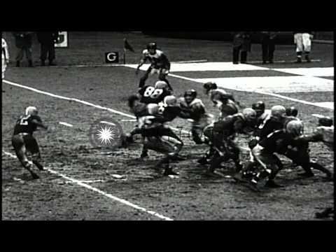 Cleveland Browns defeat New York Giants by 24-7 at Yankee Stadium...HD Stock Footage