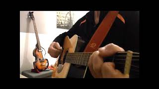 Polizist  (Wolfgang Ambros Cover)