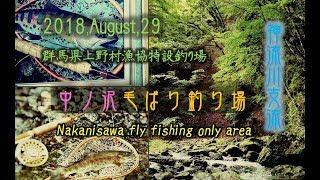 2018 ,August,29,fly fishing/フライフィッシング 上野村漁協 中ノ沢毛ばり釣り場