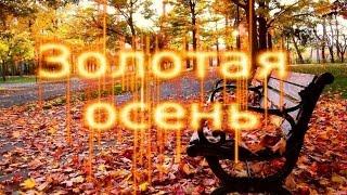 Осенний листопад. Золотая осень