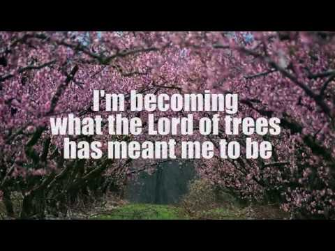 Tree Song sung  Evie Karlsson with Lyrics