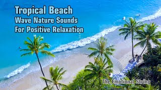Tropical Beach Wave Nature Sounds With Piano Music For Positive Relaxation