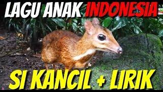 SI KANCIL | LAGU ANAK INDONESIA | LIRIK SI KANCIL                                 #LAGUANAKPOPULER