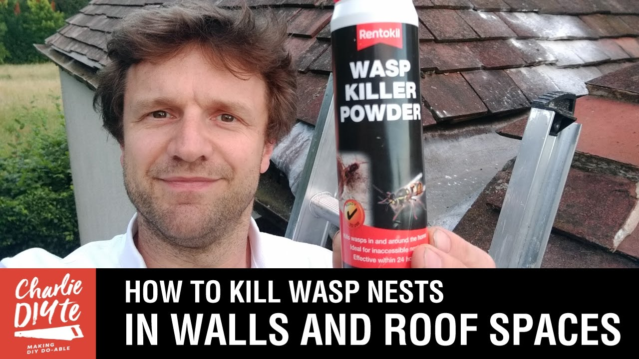 How To Kill Wasps Nests In Walls And Roof Spaces Youtube