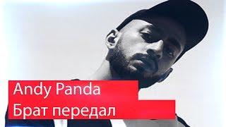 Реакция на Andy Panda - Брат передал