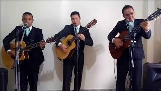 serenata de cuerda, para toda ocasion Cumpleaños Feliz trio alma mia