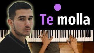 [2.41 MB] Arnon - Te Molla (feat. Killua) ● караоке | PIANO KARAOKE ● + НОТЫ & MIDI