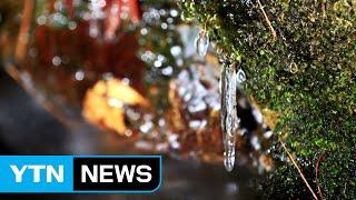 [영상] 가을 위에 쓴 겨울 이야기 / YTN