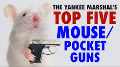 TOP FIVE Mouse/Pocket Guns