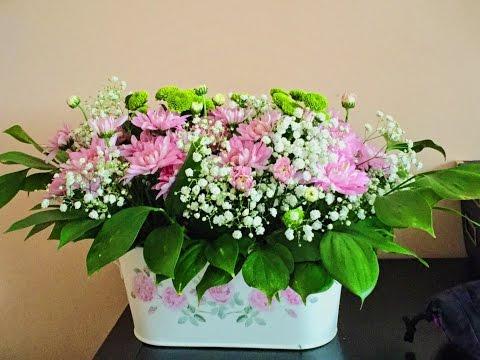 Сухоцветы, сухие цветы Композиции своими руками Сбор