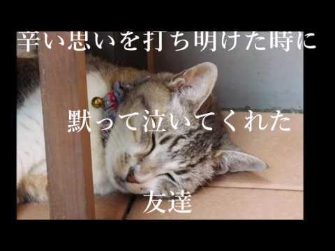 絢香 Ayaka -