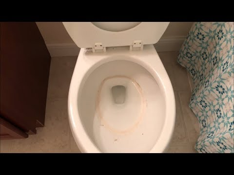 How to clean a toilet after someone is sick with a stomach bug