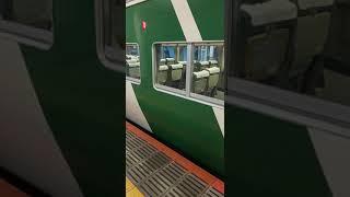 【185系】JR東日本 東海道本線 東京駅で観察