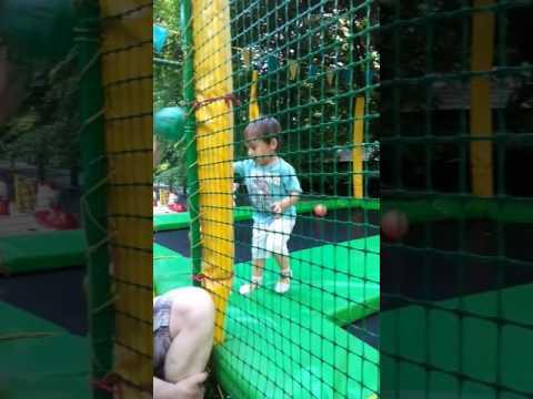 Timur zoo park odessa