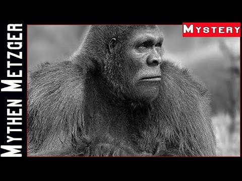 Mystery Banden Talk #5:  Bigfoot, Monster & Kryptide