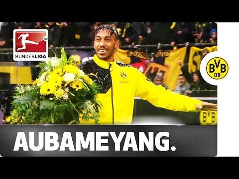 Africa's Footballer of the Year - Dortmund Fans Celebrate Aubameyang