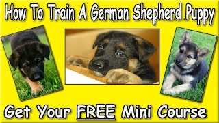 ♥♥♥ How To Potty Train A German Shepherd Puppy [download Now] Free Course Sign Up Here! :)))