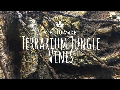 How to make Terrarium Jungle Vines