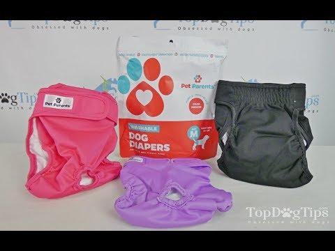 Pet Parents Washable Dog Diapers Review