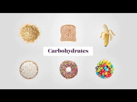 The Spectrum of Carbohydrates from Whole Grain to White Bread