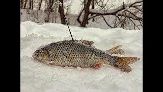 Рыбалка в Глухозимье на верхней  Москве-реке. Марафон в 15 км. РОЗЫГРЫШ ПРИЗОВ!!!