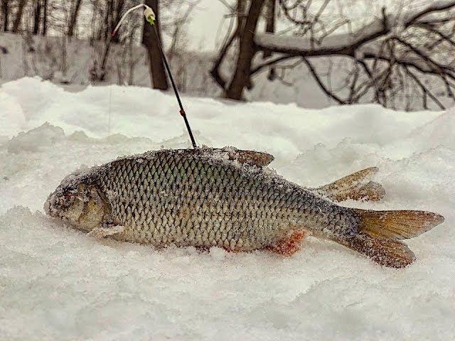Онлайн видео. Рыбалка в глухозимье
