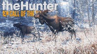 NOWA ZIMOWA MAPA! | theHunter: Call of the Wild #13 [PL]