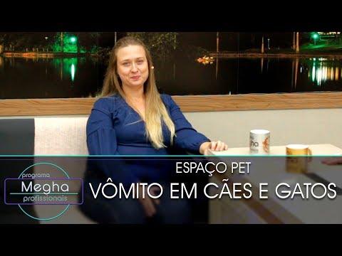 Vômito Em Cães E Gatos | Dra. Luciana Fonseca | Pgm 649 | B3