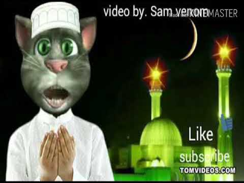 Ali Mola Ali Mola Full Song 2020 New Video By My Toking Tom Youtube