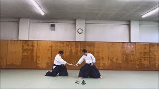 津軽家伝書に基づく小野派一刀流の相小太刀の再現、の試し撮り